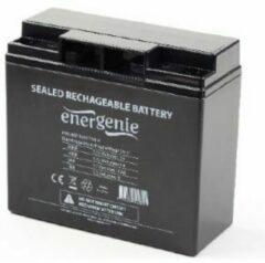Energenie Gembird BAT-12V17AH/4 Sealed Lead Acid (VRLA) 17Ah 12V UPS-accu