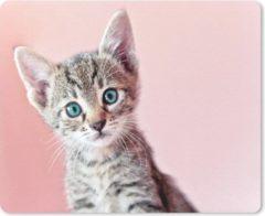 Bruine MousePadParadise Muismat Katten - Kitten met blauwe ogen op roze achtergrond muismat rubber - 23x19 cm - Muismat met foto