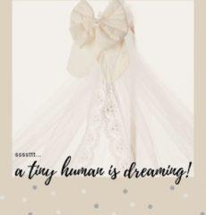Gebroken-witte BabyRace Hemeltje van tule en kant - Exclusief voor wieg met hemeltje - Luxe uitstraling