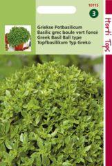 Merkloos / Sans marque Hortitops Zaden - Pot-Basilicum Bascuro - Donkergroene