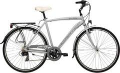 28 Zoll Herren Trekking Fahrrad 18 Gang Adriatica Sity 3... grau, 55cm