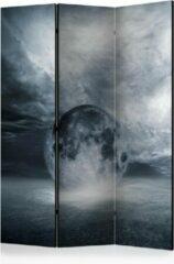 Grijze Kamerscherm - Scheidingswand - Vouwscherm - The lost planet [Room Dividers] 135x172 - Artgeist Vouwscherm