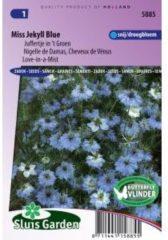 Sluis Garden Juffertje in 't Groen bloemzaden – Miss Jekyll Blue