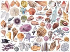 Galison The Beachcomber's Companion 1000 Piece Puzzle with Shaped Pieces