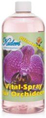Kuders Pflanzenparadies Kuders Vital-Spray für Orchideen