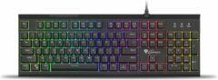 Genesis Thor 210 RGB Gaming Keyboard met Hybride mechanische toetsen Zwart