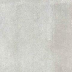 Herberia Ceramiche Vloer- en wandtegel Oxid Grey 90x90cm Gerectificeerd Industriële look Mat Grijs SW07311390-1