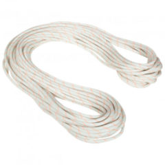Mammut - 9.9 Gym Workhorse Dry Rope - Enkeltouw maat 40 m, wit/grijs