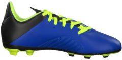 Fußballschuhe X 18.4 FxG J mit flexibler Außensohle DB2419 adidas performance FOOBLU/SYELLO/CBLACK