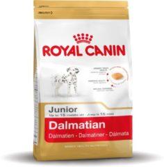 Royal Canin Dalmatian Junior - Hondenvoer - 12 kg