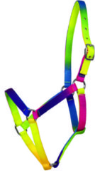 Waldhausen Halter rainbow neon multicolor Shetty
