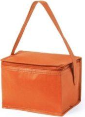 Merkloos / Sans marque Kleine mini koeltasjes oranje sixpack blikjes - Compacte koelboxen/koeltassen en elementen