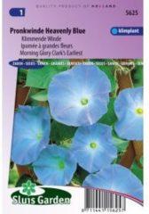 Sluis Garden Klimmende Winde bloemzaden - Pronkwinde Heavenly Blue