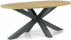 Lifestyle Garden Furniture Lifestyle Brookline dining tuintafel ovaal 200 x 110 cm