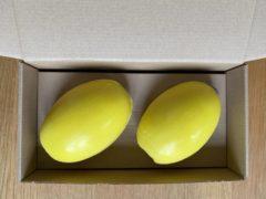 Provendi Zeepbollen los Citroen/geel voor schroefsysteem (Marseille zeep)