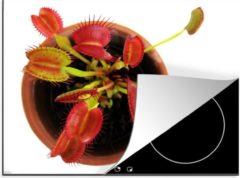 KitchenYeah Luxe inductie beschermer Venus Vliegenval - 70x52 cm - Rode Venus Vliegenval in een bloempot - afdekplaat voor kookplaat - 3mm dik inductie bescherming - inductiebeschermer