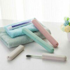 Eco-friendly tandenborstel doos - Grijs - Tarwe - Binnenshuis - Opbergdoos - Universeel - Reisetui - Koker - Sustainable case - Zero plastic