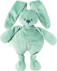 Nattou Lapidou - Knuffel konijn - Groen - 30 cm