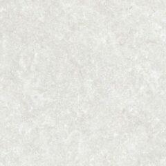 Colorker Rockland Vloertegel 59.5x59.5cm 9.4mm vorstbestendig gerectificeerd Moon Mat 218830