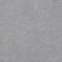 Cifre Ceramica Cifre Cerámica Vloer- en wandtegel Belgium Pierre Grey 60x60 cm Gerectificeerd Natuursteen look Mat Grijs SW07310945-1
