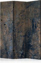 Kamerscherm - Scheidingswand - Vouwscherm - Prehistoric dance [Room Dividers] 135x172 - Artgeist Vouwscherm