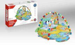 FDBW Baby Speelmat Gym – 65 x 45 x 10 cm | Interactief Speelkleed – Regenboog | Speelkleed Met Boog | Baby Speelkleed – Land Zee Lucht