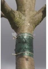 Groene Nature Insecten kleefband 150 cm 6060134