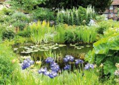 PB-Collection 2 stuks Tuinschilderij Pond groen 50x70cm