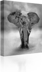 Sound Art - Canvas + Bluetooth Speaker Elephant (23 x 28cm)