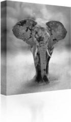 Sound Art - Canvas + Bluetooth Speaker Elephant (23 x 28cm)