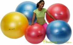 Gymnic Ledraplastic Body Ball 85 cm rood