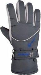 Merkloos / Sans marque Winter handschoenen Starling grijs voor volwassenen XL (10)