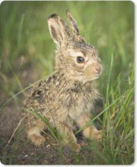 MousePadParadise Muismat Baby konijnen - Baby konijn in het gras muismat rubber - 19x23 cm - Muismat met foto