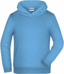 Lichtblauwe James & Nicholson James And Nicholson Kinderen/Kinderen Basic Hoodie (Hemelsblauw)