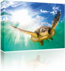 Blauwe Sound Art - Canvas + Bluetooth Speaker Turtle In The Sea (23 x 28cm)