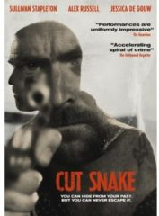 Kolmio Media Cut Snake | DVD