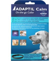 Adaptil Anti-Stress Band Hond M/L - Anti stressmiddel - 70 cm
