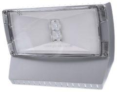 Ceag Notlichtsysteme Outdoor Wall CGLine+ - LED-Einzelbatterie-Leuchte m.autom. Funkt.test Outdoor Wall CGLine+