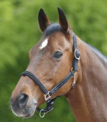 Waldhausen Halster Chrystal Verstelbaar Zwart - Paardenhalster - Pony