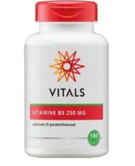 Alfytal Vitals Vitamine B5 250 mg Voedingssupplementen - 100 vegicaps