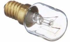 Blaupunkt Lampe für Kühlschrank 00170218