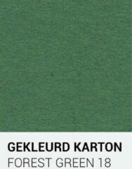 Donkergroene Gekleurdkarton notrakkarton Gekleurd karton forest groen 18 30,5x30,5 cm 270 gr.