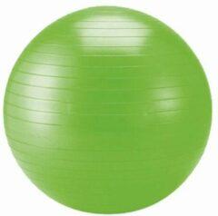 Schildkröt Fitness - Gymnastikball maat 65 cm, groen