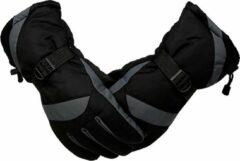 Topco Ski Handschoenen - Grijs