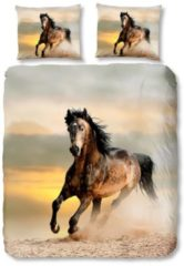 Bettwäsche Beauty Pferd Good Morning braun