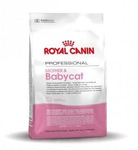 Afbeelding van Royal Canin Fhn Mother & Babycat - Kattenvoer - 4 kg - Kattenvoer