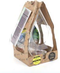 Transparante Wildlife World Vogelvoederhuisje - Raam - Druppel