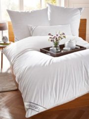 Daunen Bettenprogramm Webschatz weiß