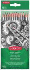 Grijze Derwent Grafietpotloden Academy , Pak Van 12 Stuks: 6b-5b-4b-3b-2b-b-hb-h-2h-3h-4h-5h