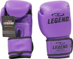Legend Sports Bokshandschoenen Paars powerfit & Protect 8 oz